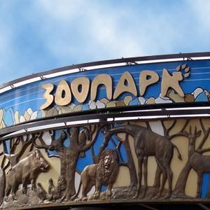 Зоопарки Железнодорожного